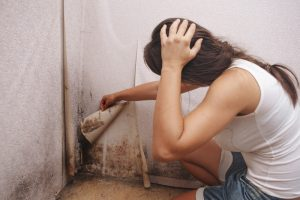 Read more about the article Can Mold Be Deadly?