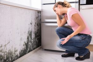 Read more about the article Cleaning Mold In My Home – 3 Facts You Should Know Before Cleaning Mold Yourself