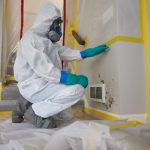 mold damage ServiceMaste by Wright