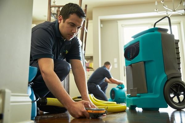 Read more about the article What is the Best Water Damage Restoration Company in Naples, Florida Today?