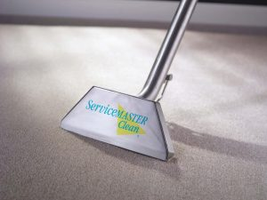 Read more about the article Carpet Cleaning: Why You need it for your Business