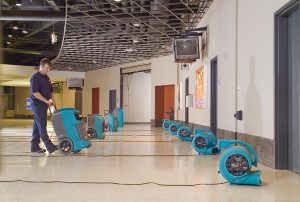Read more about the article Condo Water Damage in Naples, FL