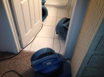 Read more about the article Broken Toilet Line Causes Water and Mold Damage