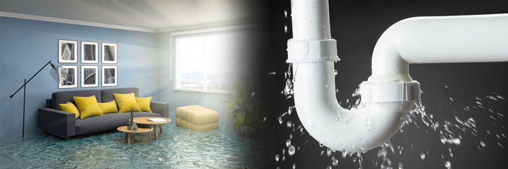 Read more about the article Water Damage From Pipe Under Sink
