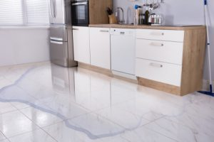 Read more about the article Water Damage to Single Family Home in Fort Myers, FL