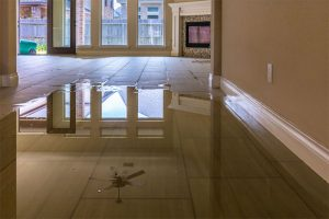 Read more about the article Water Damage Restorations and Repair Services