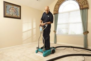 Read more about the article How to Avoid Carpet Stains this Thanksgiving