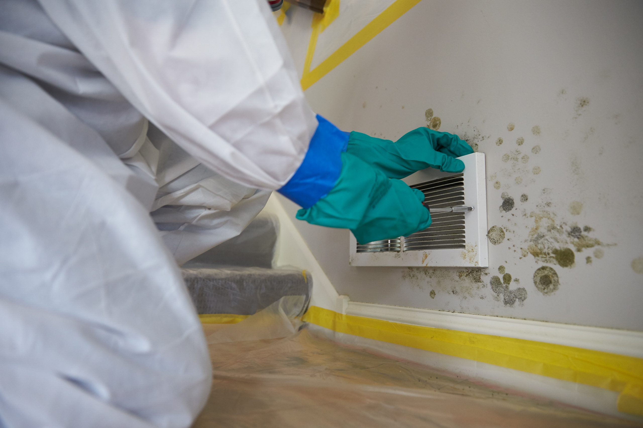 You are currently viewing How do you keep mold from not coming back?