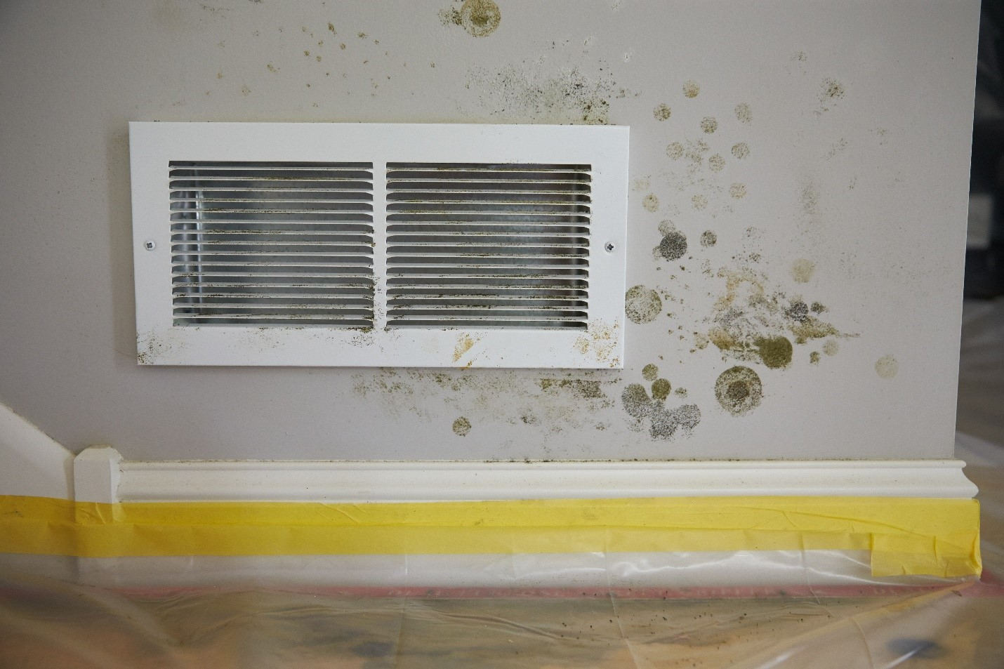 Read more about the article How Do You Deal With Indoor Air Pollution?