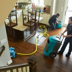 Top 5 Water Damage Restoration Companies in Fort Myers, FL
