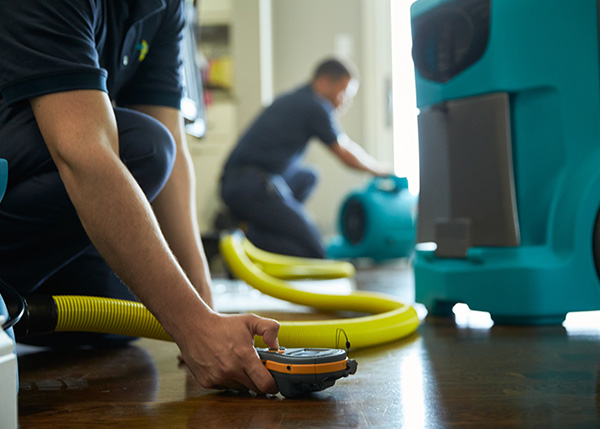 Read more about the article Top Water Damage Restoration Company in Cape Coral, FL
