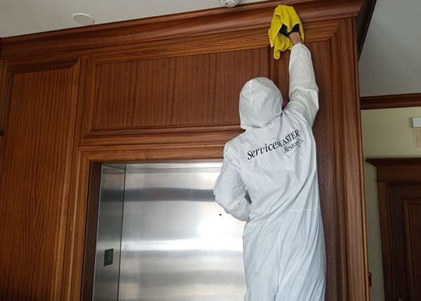 Read more about the article How Does Professional Sanitizing Work?