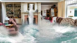 Read more about the article Professional Restoration Services For Water Damage In Sarasota!