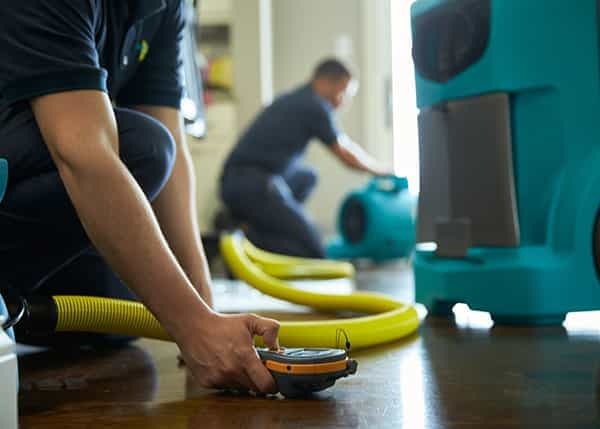 Read more about the article Keep Your Home Hygienically Safe and Secure with Water Damage Services in Sarasota