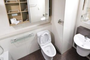 Read more about the article Common Causes of Flooding Toilets