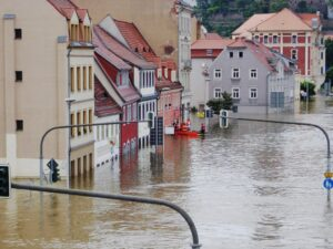 Read more about the article Things To Avoid During Water Damage In Port Charlotte!